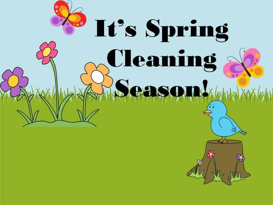 spring cleaning images - reverse search
