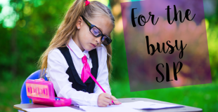 Tips To Run A Successful IEP Meeting For The Busy SLP