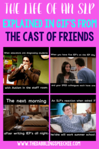 The Life of the SLP Explained From The Show Friends