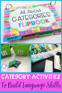 Interactive Category Activities To Build Language